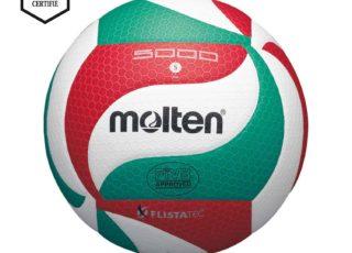 Volleybal Molten VM5000