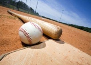 Honkbal / softbal